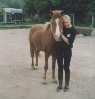 GerDavina-Paard